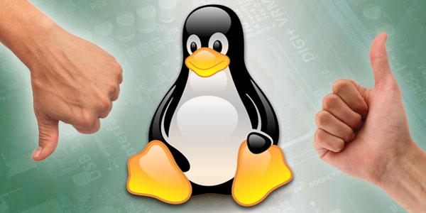 xl  linux review