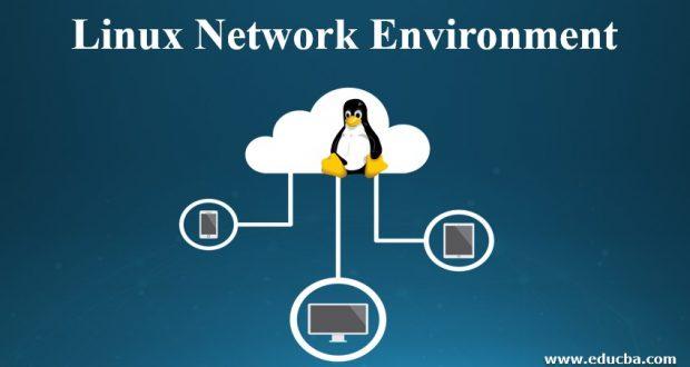 Linux Network Environment