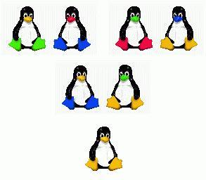 evolving penguin